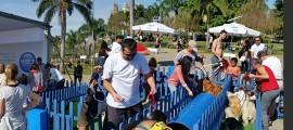 Montagem da ação de aproximação e interação do Grupo Four Midia para a NET no Parque Villa-Lobos